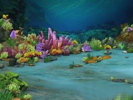 Underwater Ocean Scene 3d preview