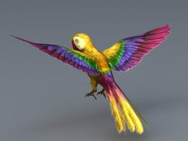 Yellow Parrot Bird 3d model preview
