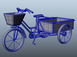 Adult Tricycle Cart 3d model preview