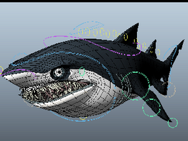 Scary Shark 3d preview