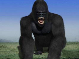 King Kong 3d preview
