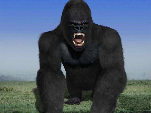 King Kong 3d rendering