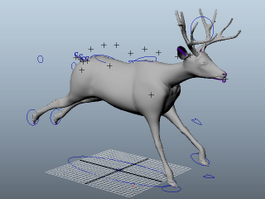 Animated Deer 3d model preview