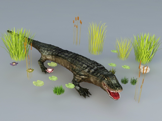 Crocodile and Grass 3d rendering