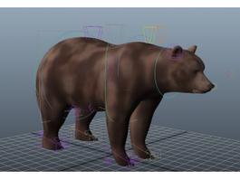 Brown Bear Rig 3d model preview