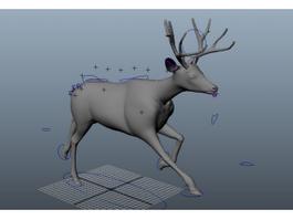 Running Deer Rig 3d model preview