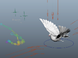 Animated Pigeon Rig 3d preview