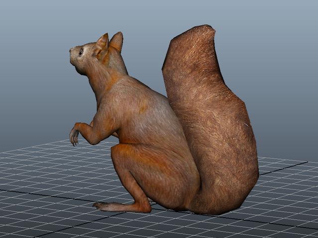 Fat Squirrel 3d rendering