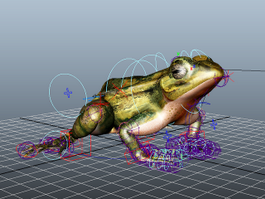 Brown Frog Rig 3d preview