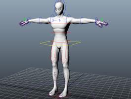 Spider Man Rig 3d model preview