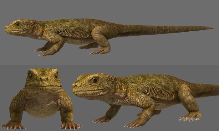 Komodo Dragon 3d rendering