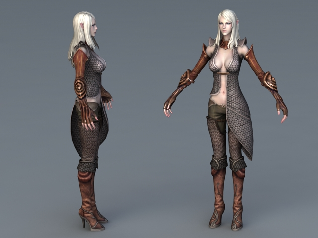 Beautiful High Elf Female 3d rendering