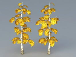 Birch Tree Fall Color 3d model preview