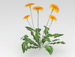 Dandelion Leaves Flower 3d preview