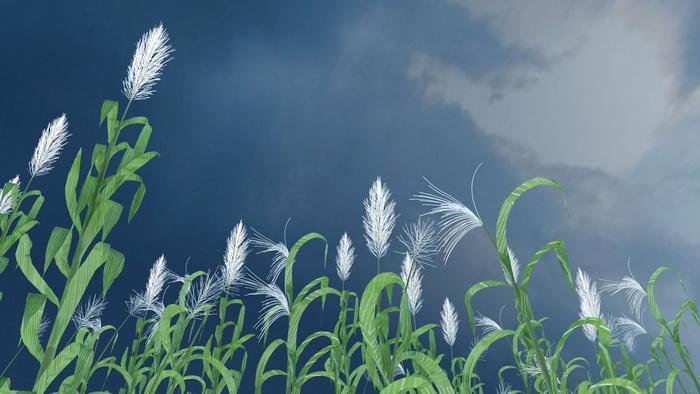 Tall Reed Grass 3d rendering