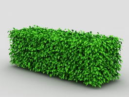Box Hedge Topiary 3d preview