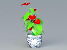 Anthurium Potted Plant 3d preview