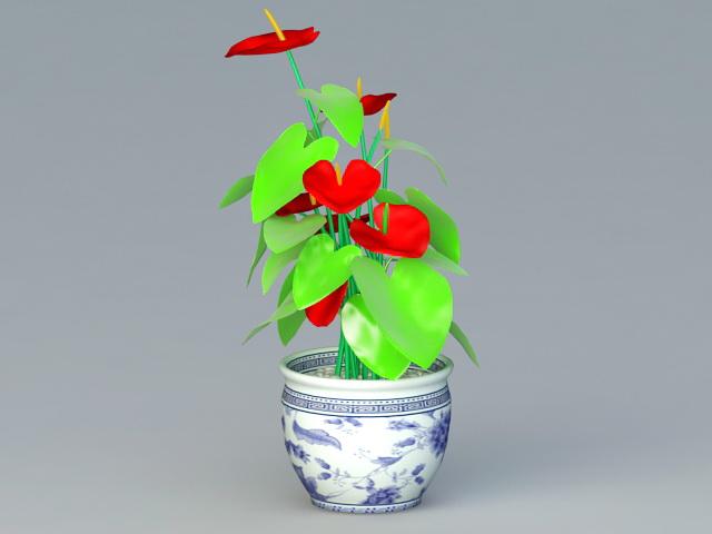Anthurium Potted Plant 3d rendering