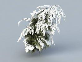 Winter Cedar Tree 3d preview