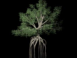 Big Tree with Roots 3d model preview