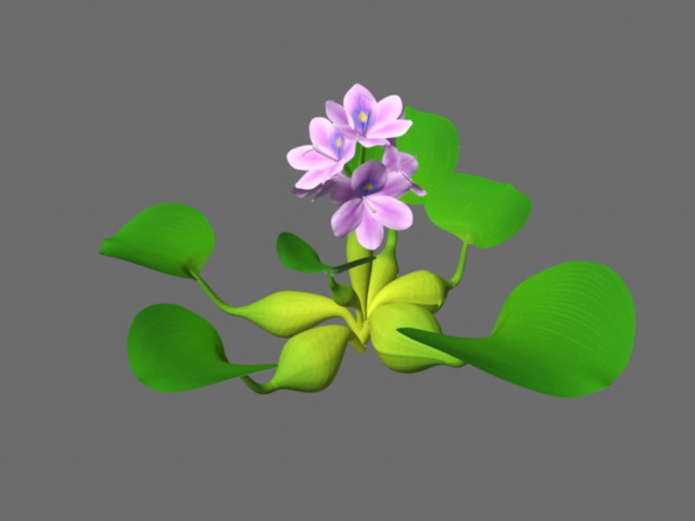 Water Plant with Flowers 3d rendering