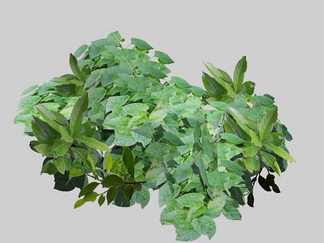 Green Leaves 3d rendering