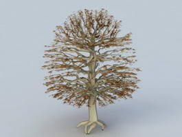 Autumn Tree 3d model preview