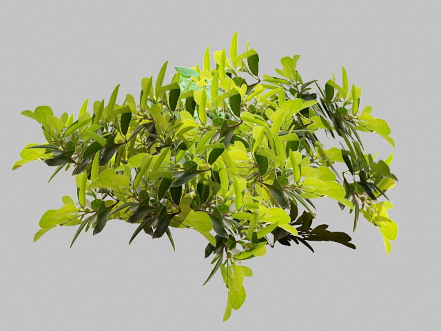 Green Leaves and Tree Branch 3d rendering