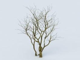 Dying Tree 3d model preview