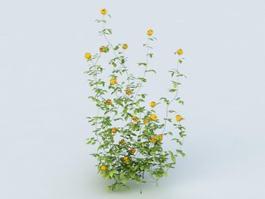 Yellow Flower Shrub 3d preview
