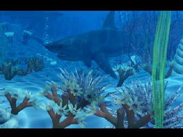 Ocean Underwater Shark 3d preview