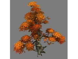 Big Maple Tree 3d model preview