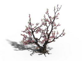 Peach Tree Blossoms 3d model preview
