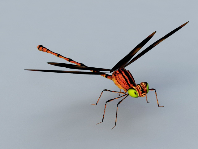Red Dragonfly 3d rendering