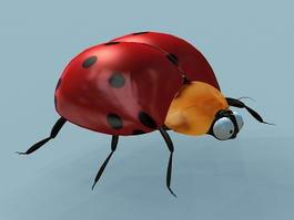Lady Beetle 3d model preview
