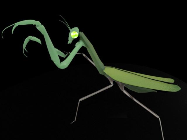 Green Mantis 3d rendering