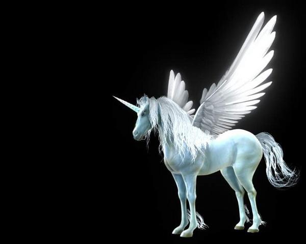 Flying Unicorn Rig 3d rendering