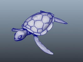 Sea Tortoise 3d model preview