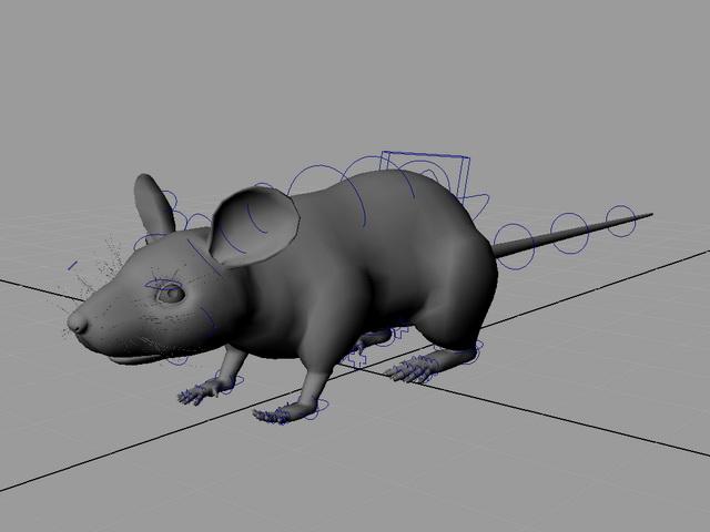 Rat Mouse Rig 3d rendering