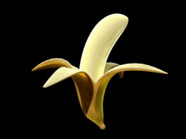 Peeled Banana 3d preview