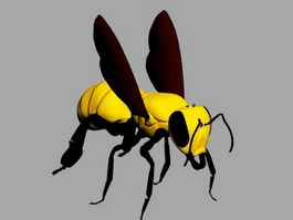 Bee Wasp 3d model preview