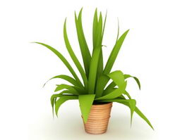 Green Leaf Indoor Plant 3d preview