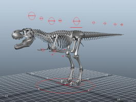 T-Rex Skeleton Rigged 3d preview