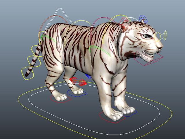 White Tiger Rigging 3d rendering