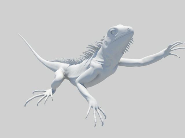 Lizard Animal 3d rendering