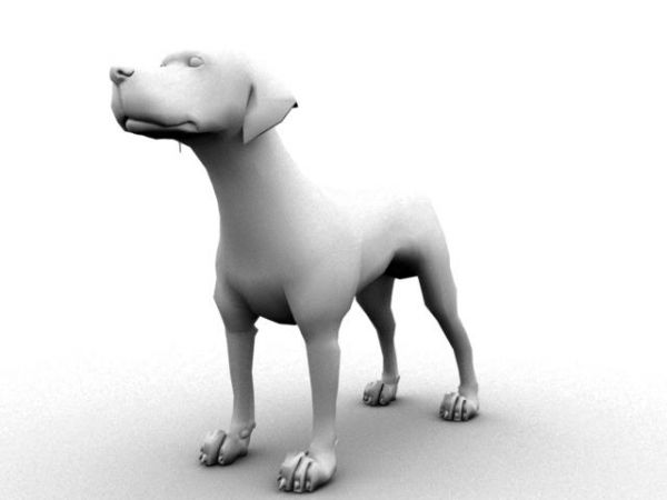Retriever Dog 3d rendering
