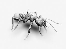 Cartoon Ant 3d model preview