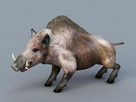 Wild Boar 3d preview