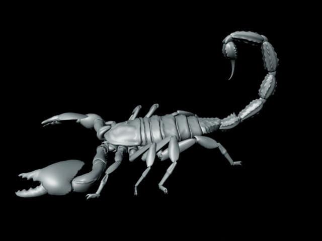 Black Scorpion 3d rendering