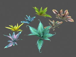 Low Poly Plants Collection 3d preview
